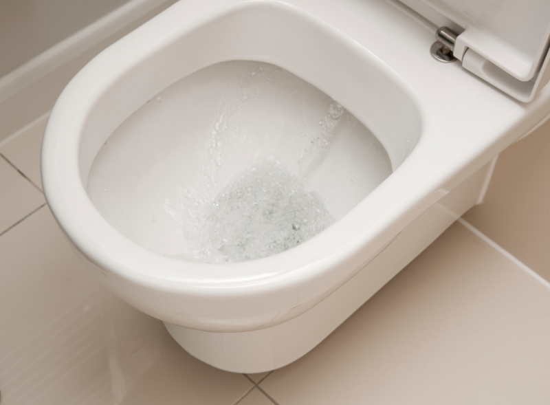 Single Flush Vs Dual Flush Toilets Hipages Com Au