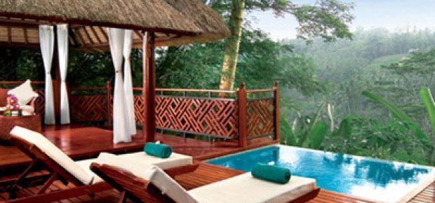 Plunge pool definition
