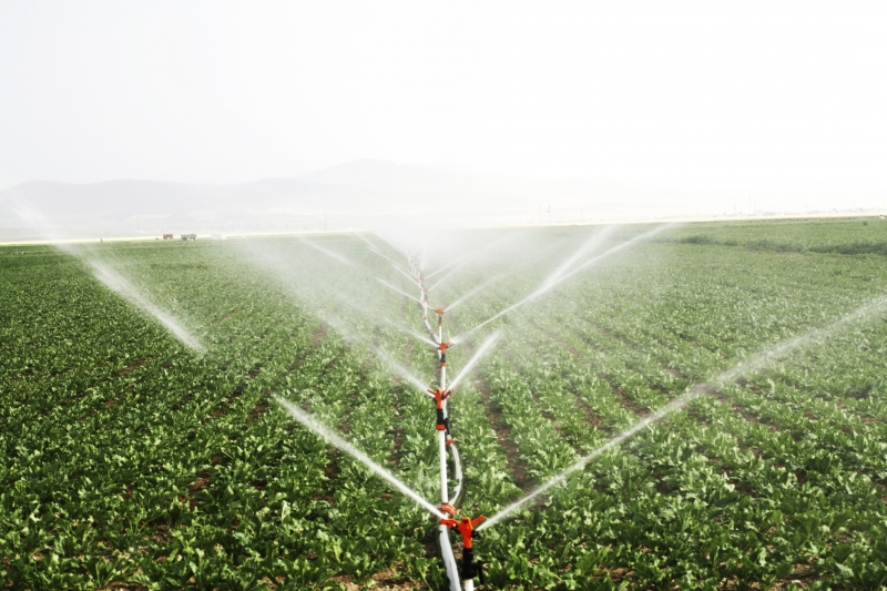 Types Of Irrigation Systems Hipages Com Au