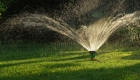 Essential Guide: When to Water Lawn