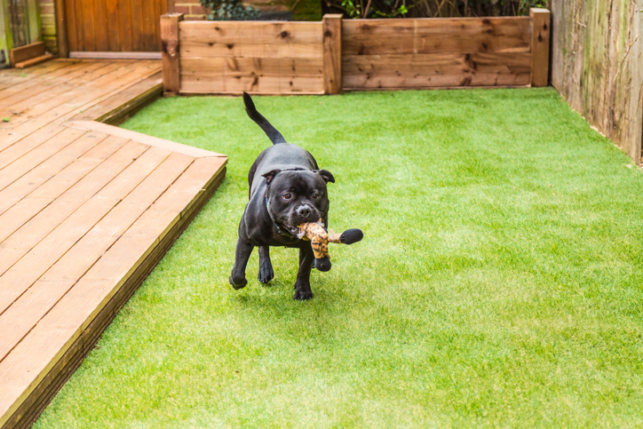 2018 How Much Does Synthetic Grass Cost Hipages Com Au