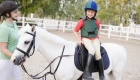 Guide to Therapeutic Horse Riding