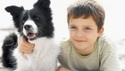 How to Raise Kid-Friendly Dogs