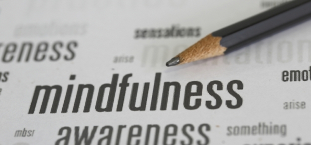 Mindfulness and pets