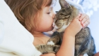 Teaching Children Kindness to Animals.