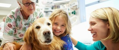 4 Best Pets for Therapy
