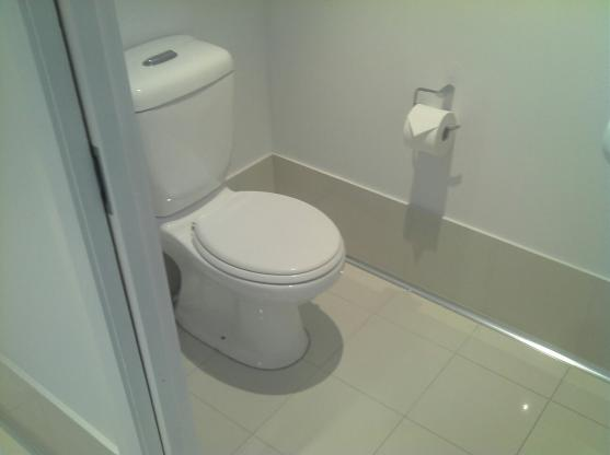 Toilet Ideas by Kustom Built