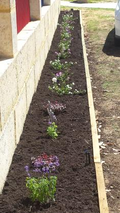 Garden edging design ideas get inspired by photos of for Gardening services adelaide