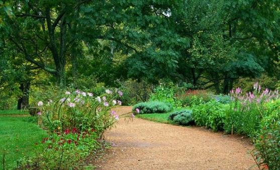 Garden Path Design Ideas by S&K Lawns to Ladders