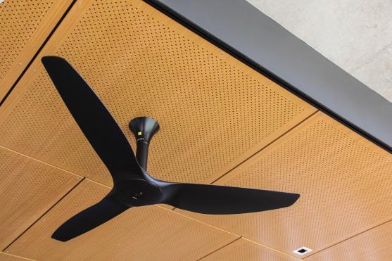 Ceiling Fan Design Ideas
