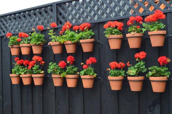 Vertical Garden Design Ideas by Joe's Garden Care
