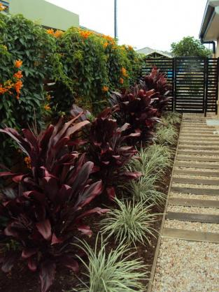 Vertical Garden Design Ideas by Lush Landscapes
