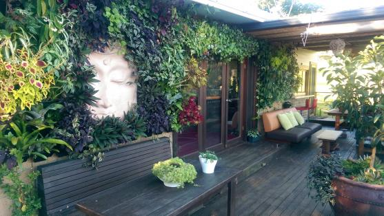 Vertical Garden Design Ideas by Green Mandala landscaping and building