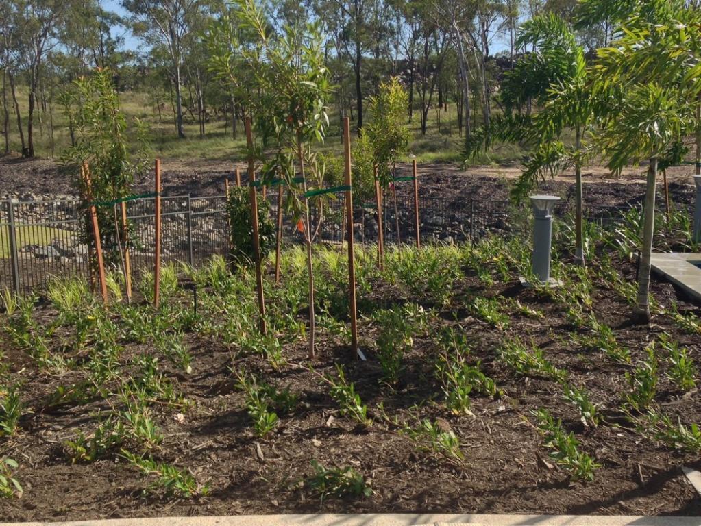 Bulling Landscape Maintenance Pty Ltd Parkwood Nathan
