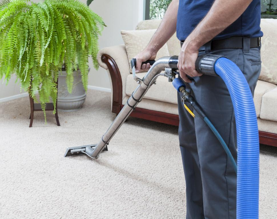 Ulysses Total Cleaning Elanora Reviews Hipages Com Au