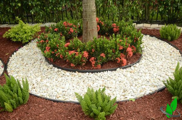 Landscaping Design Clearwater Fl