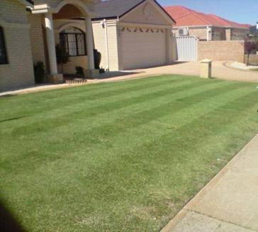 Kiss my grass lawn mowing and garden services willetton for Bathroom decor willetton