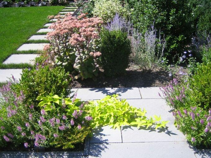 Adelaide home garden services waterloo corner abdul for Gardening services adelaide