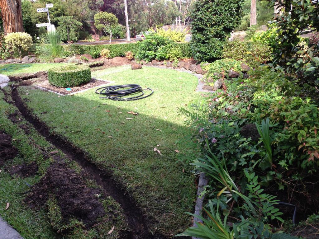 Avant Gardens Hawthorn Michael Anderson 7