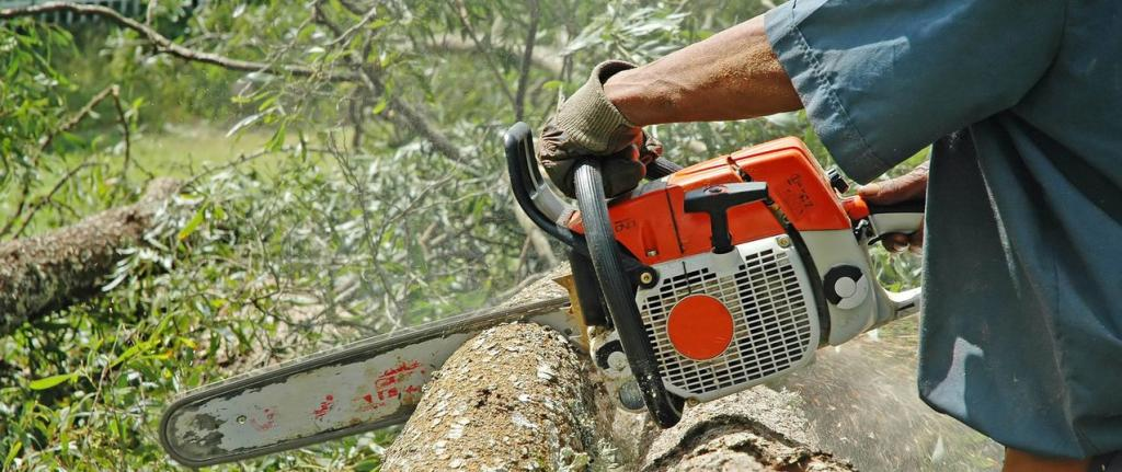 Apex Tree Surgeons Wanneroo 12 Recommendations