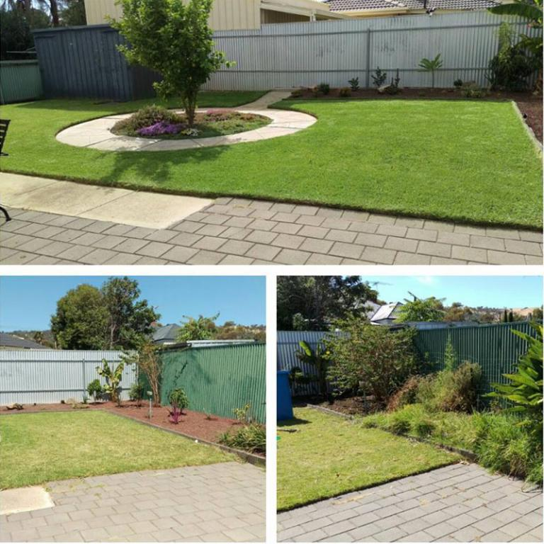 Express lawn mowing and garden services wembley wembley for Gardening express reviews