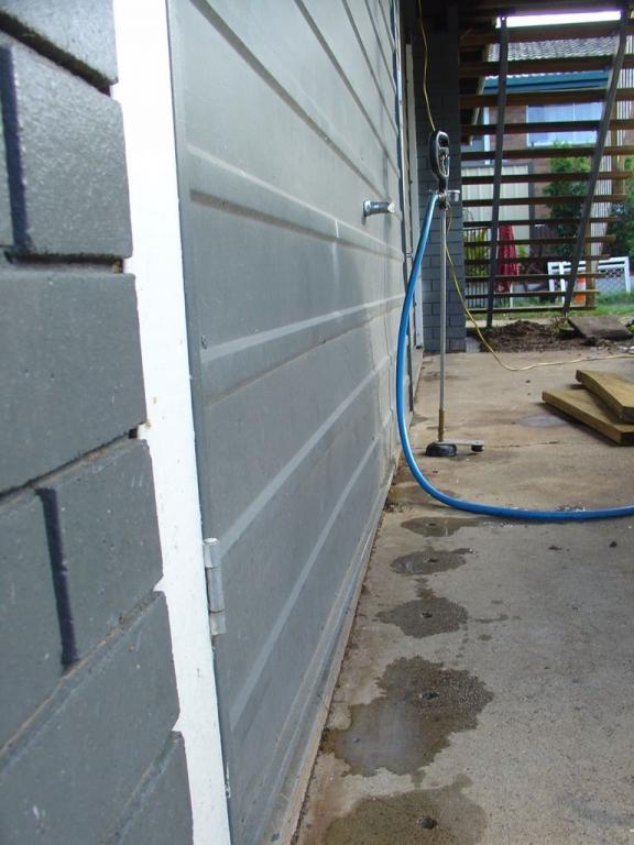 Licensed Pest Control Experts in Brisbane QLD