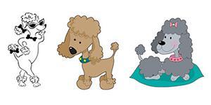 Poodle Drawings