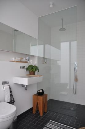 Frameless Shower Screen Designs by Bugs No More