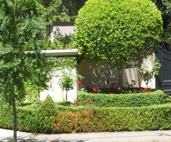 Front yard gardens gallery landscape inspirations s for Landscape design adelaide south