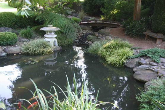 Get inspired by photos of gardens from australian for Koi pond builders sydney