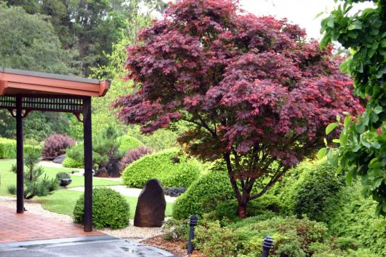 Garden Design Ideas by Inspired Landscape Design & Construction