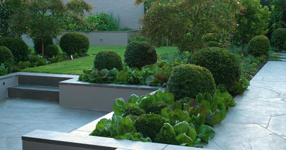 get inspired by photos of gardens from australian designers  u0026 trade professionals