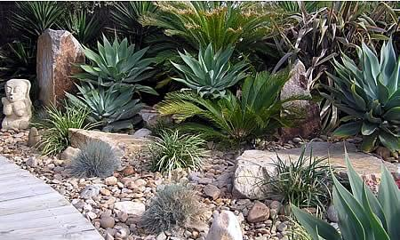 Style Ideas Drought Tolerant Plants John Mackie Horticultural