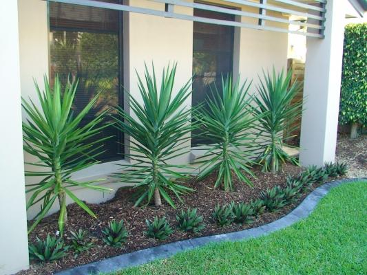 Garden design ideas get inspired by photos of gardens for Front garden designs australia