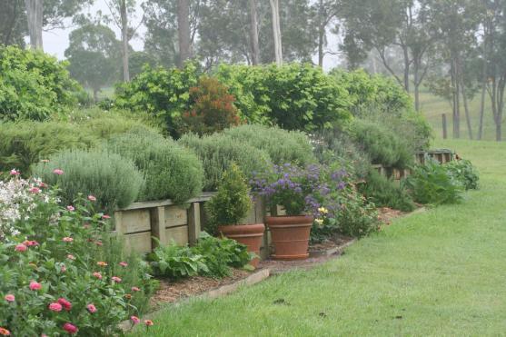 Garden Design Ideas by Daydream Landscaping & Construction