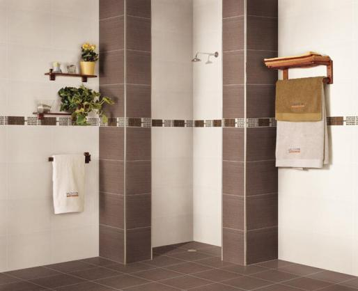 Bathroom Tile Design Ideas - Get Inspired by photos of