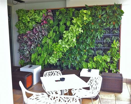 Vertical Garden Design Ideas by Growing Well garden design