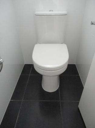 Toilet design ideas get inspired by photos of toilets for Bathroom ideas qld