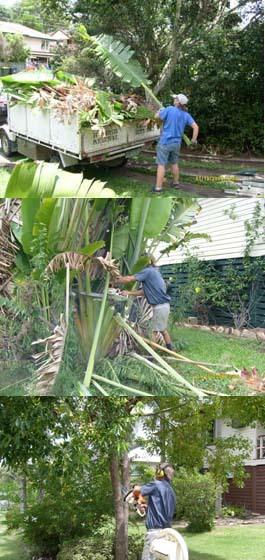 Herson Rubbish Removal Brisbane Southside Acacia Ridge