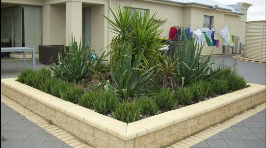 how to create a waterwise garden