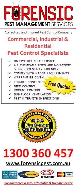 Forensic Pest Manangement Services Blacktown New South