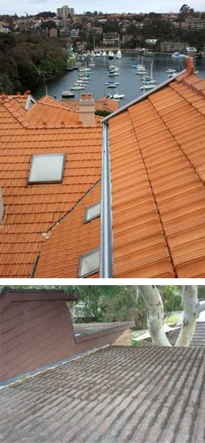 All Gutter Experts Gutter Cleaning Sydney North Shore