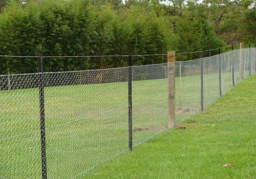 boundary fences - galleries