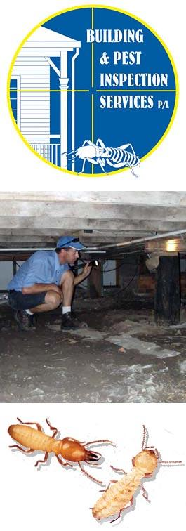 Building Inspection Services : Bundaberg building and pest inspections