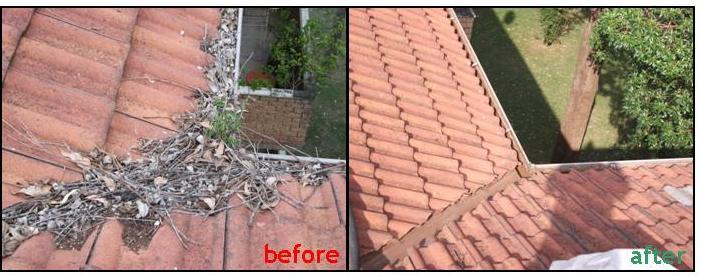 AAA Gutter Cleaning Campbelltown Liverpool Penrith
