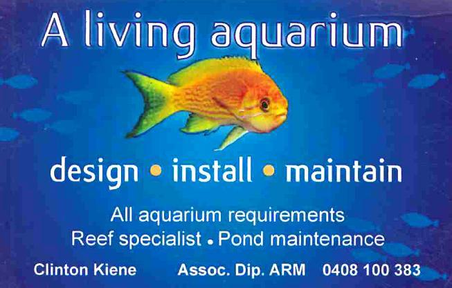 A Living Aquarium