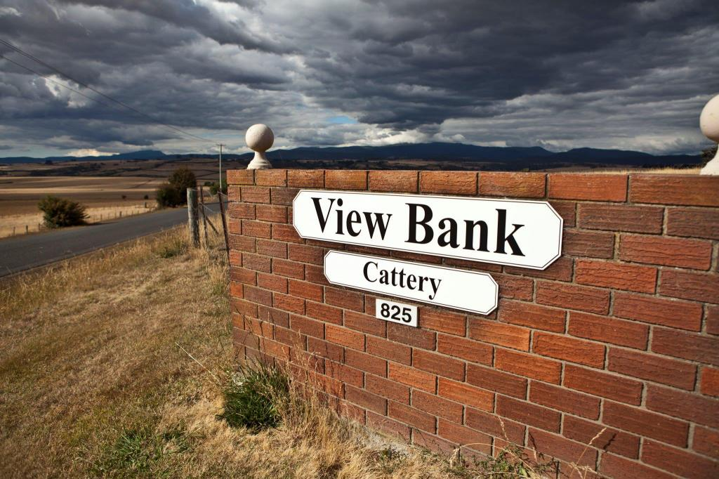 View Bank Cattery
