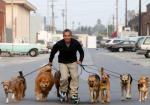 Cesar rollerblading with pack.