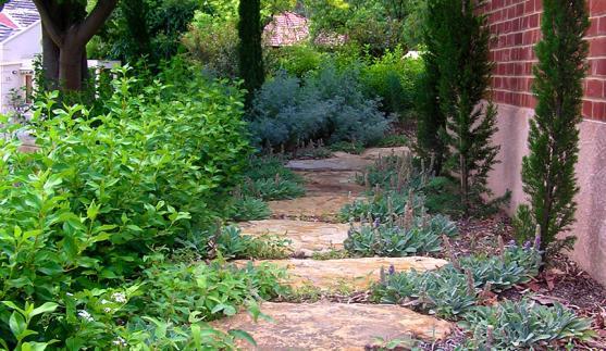 Garden Design Ideas by Caroline Dawes Gardens
