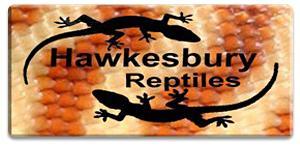 Hawkesbury Reptiles